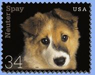 puppystamp.jpg
